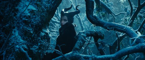 Maleficent hiding