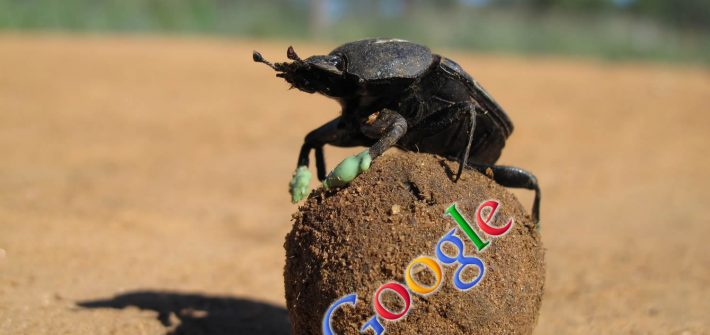 Google Dung Beetle release