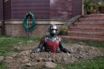 Ant-Man – More to see