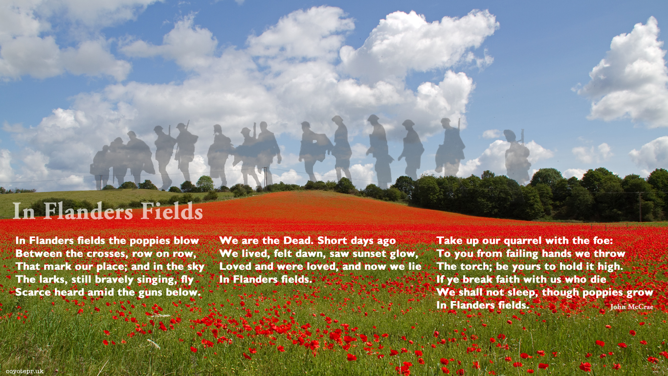 analysis of flanders fields and the