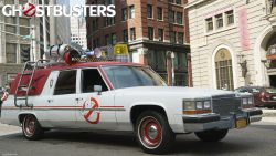 Ghostbusters Wallpaper 2