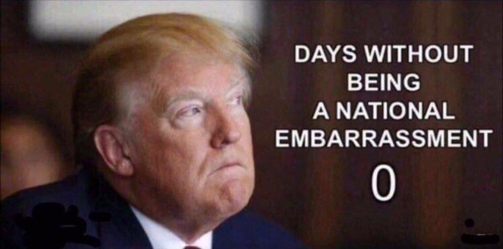 Trump idiot rating
