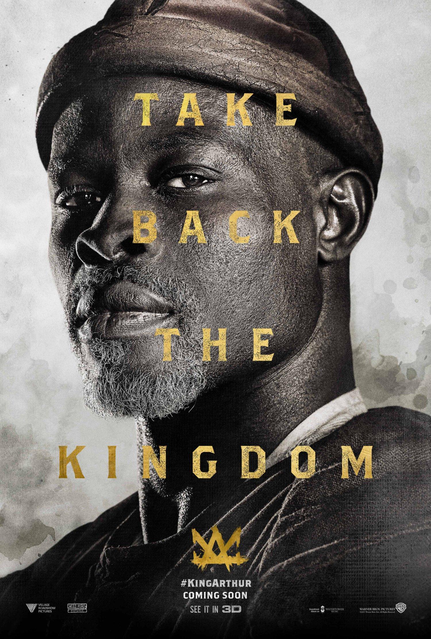 Djimon Hounsou as Sir Bedivere
