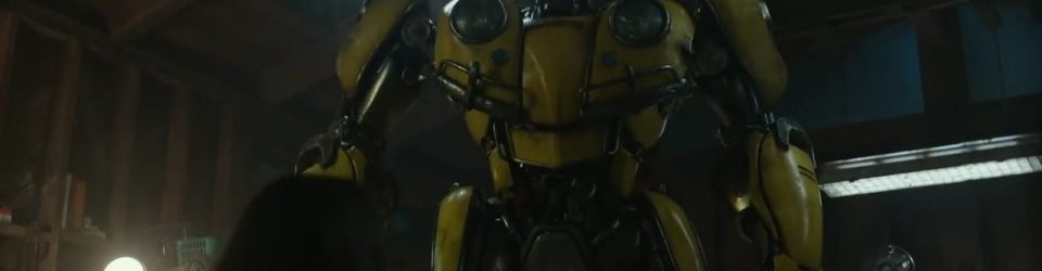 Who is Bumblebee