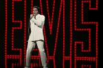 Elvis is back for one night only