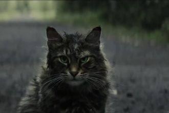 Learn more about the upcoming Pet Sematary