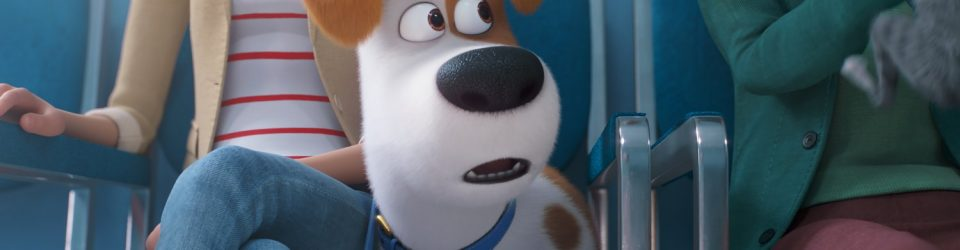 The Secret Life of Pets are back for more