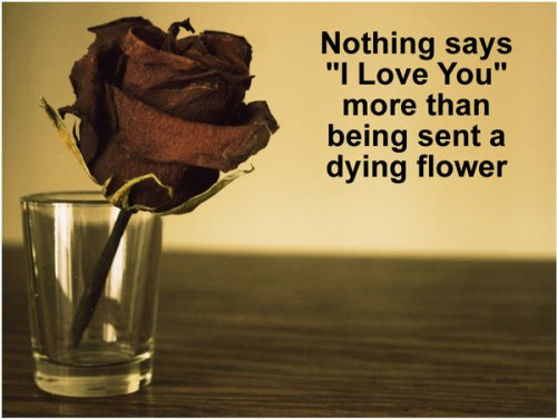 Love and dying flowers