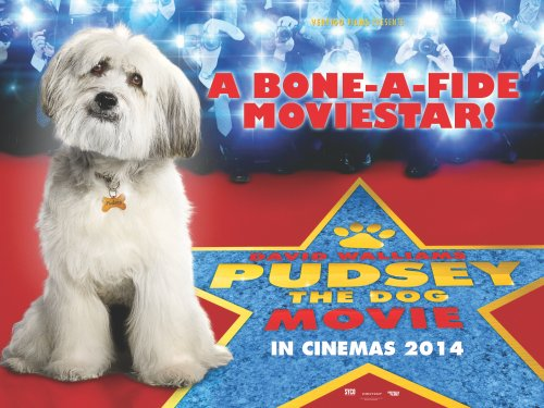 Pudsey poster