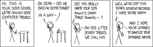 Exploits of a mom. Testing programmers work