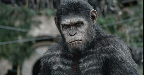 The Apes get a new trailer