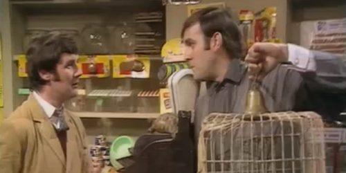 Monty Pythons Dead Parrot Sketch - The UKs favourite