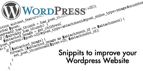 wordpress snippit