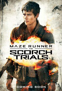 Maze Runner - Thomas
