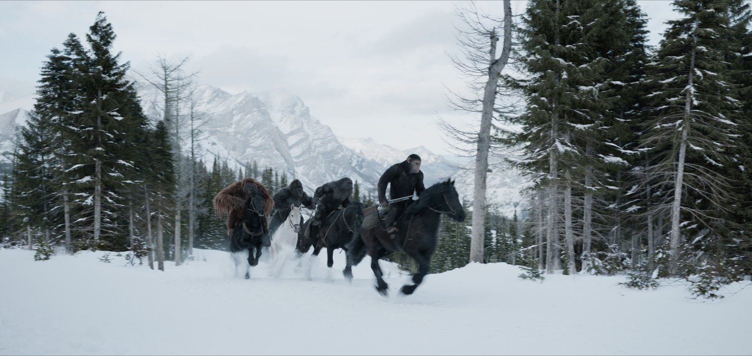 War for the Planet of the Apes image 3