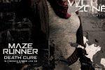 Meet the Maze Runners