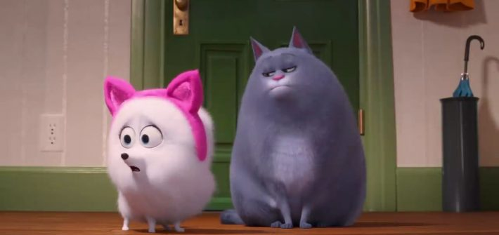 Learn how to be a cat with The Secret Life of Pets 2 new trailer