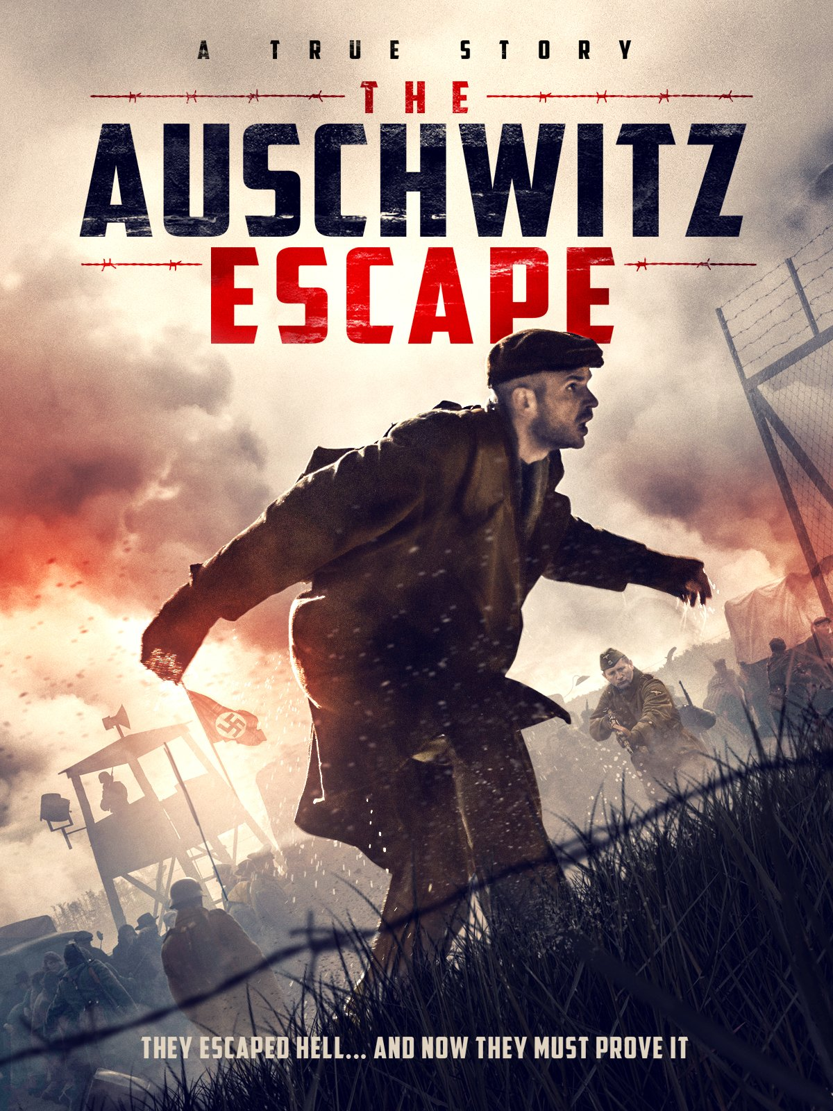 The Auschwitz Report (Signature Entertainment) Artwork