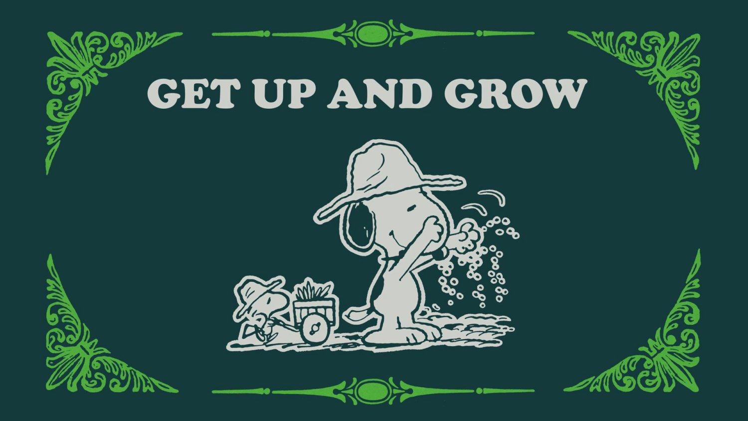 Take Care with Peanuts Get Up and Grow