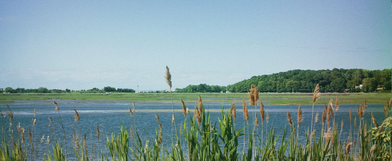 Suffolk County Long Island